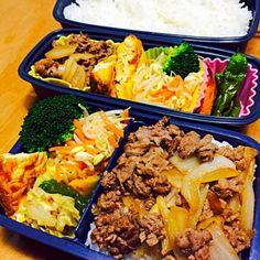 そぼろ入り卵焼き、豆もやしと人参のナムル、かぼちゃとししとうの素揚げ、ブロッコリー、牛丼 - 22件のもぐもぐ - 牛丼弁当 by kimurasawaOyK