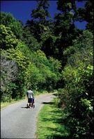Walking trails   Greater Wellington Regional Council