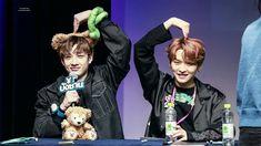 Chan and Minho