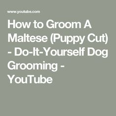Pet grooming clipper blade chart size and use dog grooming clipper how to groom a maltese puppy cut do it yourself dog grooming youtube solutioingenieria Images
