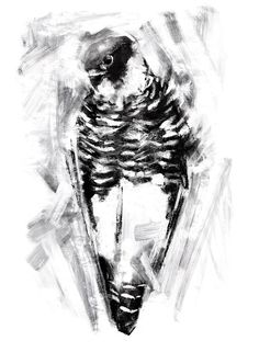 The Bat Falcon is a beautiful bird of prey, with dramatic markings and a dark head. Although black and white in this drawing, it usually boasts reddy brown markings as well. This piece attempts to catch a usually fast bird at rest, with background marks that bring to mind movement and speed. Once she catches you in her gaze, its all over. Find out why shes name a Bat Falcon on the blog! http://tinyurl.com/batfalcon   WHAT YOULL RECEIVE: --------->A giclee print (please ...