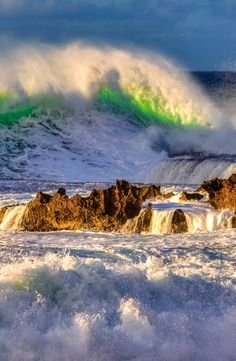"""""""Roaring Ducky"""" - 20  foot waves on Oahu's North Shore"""