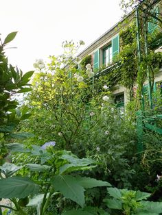 Giverny, monets home