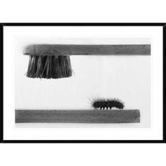 """Global Gallery 'Dear Friend' by Stefano Mallus Framed Photographic Print Size: 30"""" H x 42"""" W x 1.5"""" D"""