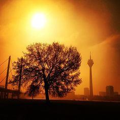 Lichtstimmung am Rheinufer...