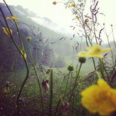 Forni di Sopra-Carnia - Il Ricamificio