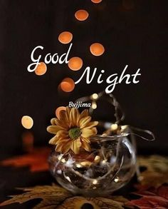 Good Night Dear, Good Night Gif, Good Morning Roses, Lord Krishna, Table Decorations, Arya, Motivational, English, Good Night Messages