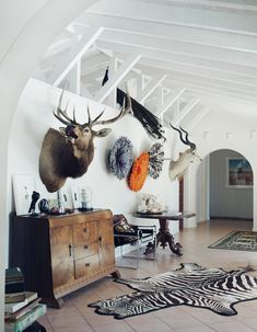 Brisbane Home of Michael Zavros & Alison Kubler (via The Design Files). Peacock's train falls into the space. Mounted Stag and African antelope #Taxidermy