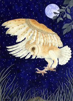 "Watercolour  ""A Barn Owl eyes up its prey"" by aquartistic"