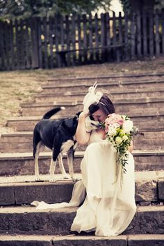 Tú Perro Tiene Que Ir a Tú Boda #animales #boda #celebracion #perros #ceremonia #curioso