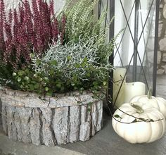 Herbstliche Deko am Hauseingang