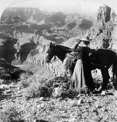 GRAND CANYON: SIGHTSEER. A woman standing next to a horse as she looks out across the Grand Canyon in Arizona through a pair of binoculars. Stereograph, 1903.