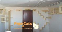 Garanta um ambiente divertido e saudável para seu gatinho. Dê à ele de presente um espaço para que ele possa se divertir e se exercitar. Fale conosco :  011 2779 6733 / 011 9 6700 9912 E-mail: pepecats.atendimento@gmail.com www.pepecats.com  #pepecats #moveisparagatos #torre #arranhador #saudefelina #diversao #felinos #cats #lovecats #gatos #mobiliapet #arranhadores #prateleiras  Todos os direitos reservados.