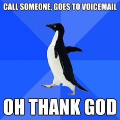 SO IS THIS...I guess me and socially awkward penguin have some things in common.
