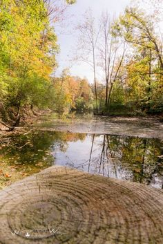 Autumn on the pond at Fowler Park in Vigo County Indiana captured by Wandering Ways Photography 2016