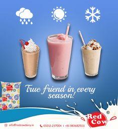 Red Cow Dairy Milk is your true friend in every season and in every mood To order Red Cow Dairy Milk Call: 9836825111 True Friends, Cow, Dairy, Milk, India, Seasons, Desserts, Goa India, Deserts