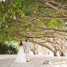 beach wedding venue under the trees