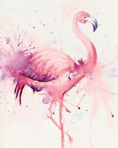 1000 images about outdoor lounging on pinterest for Flamingo feather paint