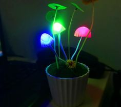 Decorate house with LED flowers. Led, Health, Flowers, Plants, House, Home Decor, Decoration Home, Health Care, Home