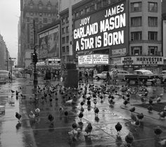 """Frank Oscar Larson, NYC, Pigeons gather in Times Square on a rainy day in 1954 in front of the marquee for """"A Star is Born,"""" starring Judy Garland. Further down the block is the billboard for """"On the Waterfront,"""" starring Marlon Brando. Vintage New York, Vintage Heart, Vintage Black, Retro Vintage, New York Street, New York City, 42nd Street, New York Photographie, Vintage Photographs"""