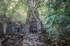 "It is said to be the model of a castle in the sky from ""Laputa""  (only a rumour tho...) - Beng Mealea jungle temple near Siem Reap, Cambodia #Ghibli #Travel"