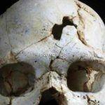 El primer asesinato de la historia se produjo en Atapuerca