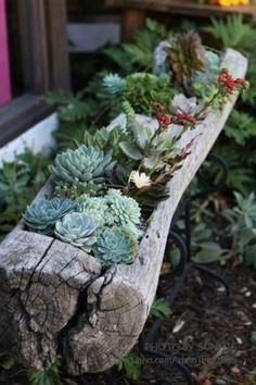 Avec toutes ces idées vous pourrez réaliser un décor magnifique dans votre jardin!