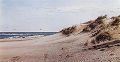 "WINDSONG - Limited edition lithograph print of winter dunes along Pea Island National Wildlife Refuge in NC.  Approximate image size 12.5"" x 22""    $45 unframed"