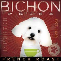 just like a Bichon Frise!