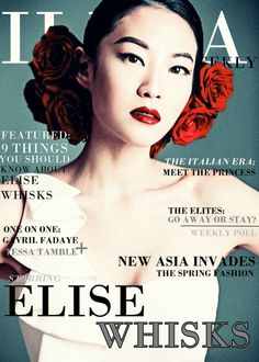 Illea Weekly - Elise Whisks #TheSelection