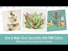 How to make Three Succulents with FMM Sugarcraft Cutters - YouTube
