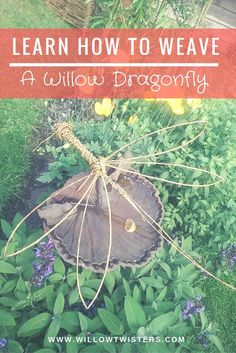 Watch Hanna from Willowtwisters walk you through how to make a willow dragonfly