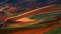 Red Land Dongchuan, Yunnan, China.  www.roxron.com