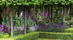 RHS Chelsea Flower Show 2016 - silver gilt medal winner Husqvarna garden by Charlie Albone