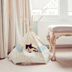 Teepee pet bed--I need this! Cat Tipi, Niche Chat, Pet Furniture, Pet Home, Cozy Bed, Pet Beds, Diy Stuffed Animals, Crazy Cats, Dog Cat