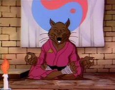 "Master Splinter (a.k.a. Hamato Yoshi) - ""Teenage Mutant Ninja Turtles"""