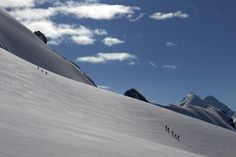 Roped parties of climbers walk on a glacier marking the border with Switzerland (left) and Italy on the way to the summit of the Breithorn at 13,661 feet in the Alpine resort of Zermatt August 4, 2014.