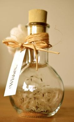 wishes: jar full of dandylion seeds  or feathers :-)