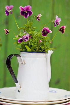 Viola in vintage enamel ~ Floral Arrangement Deco Floral, Arte Floral, Dream Garden, Garden Art, Roses Garden, Garden Design, Estilo Country, Pot Jardin, Rustic Lighting