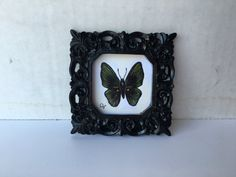 Small Butterfly 2.5x2.5 inch Painting in black frame by ivymaggie