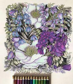 Colored Pencil Artwork, Color Pencil Art, Colored Pencils, Botanical Illustration, Watercolor Illustration, Coloring Books, Coloring Pages, Secret Garden Colouring, Flower Collage