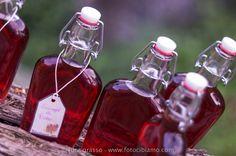 sciroppo di rose - rose syrup