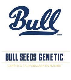 Bull Seeds Genetic on Behance