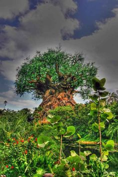"""Fake . The """"tree of life."""" supposed to be a mystical tree in Africa . Actually its a fake tree in Animal kingdom at Disney world ."""