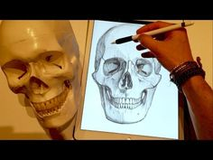 Apple Pencil drawing iPad Pro art tutorial - How to draw a skull in Procreate - YouTube