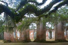 Old Sheldon Church, Beaufort, South Carolina, destroyed by the British in the American Revolution