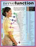 Nerve Function determines overall body function. When there is stress, interference, trauma, toxins, and believe it or not too much running too, can cause compressive forces on discs and nerve roots. Long-term pressure causes muscle pain and organs underlying those muscles are in pain also. This is why people begin to feel digestive issues, fibromyalgia, headaches, migraines, restless leg syndrome, and any symptom starts at the spine which is the CORE of the issue and the cause of pain.