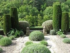clipped cypress at le jardin de la louve France - ...