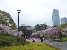 """Zojo-ji""(Tempio), Tokyo Japan"