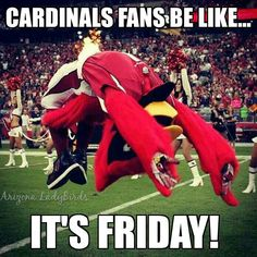 Arizona Cardinals fans be like... #NFL #AZCardinals #AZLadyBirds
